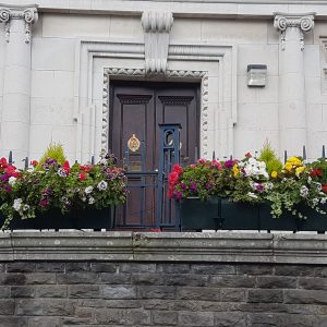 Town Hall planters in full bloom 2019